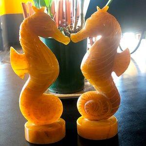 Jade Honey Seahorses